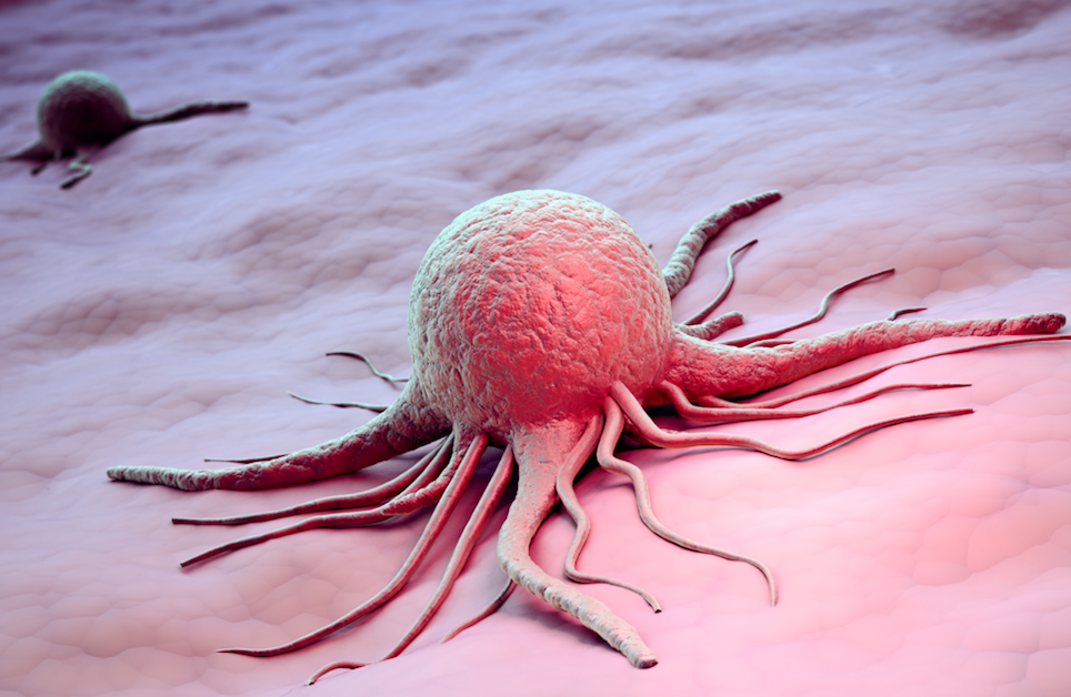 Researchers Report Findings on Three Biosimilar Trastuzumab Products