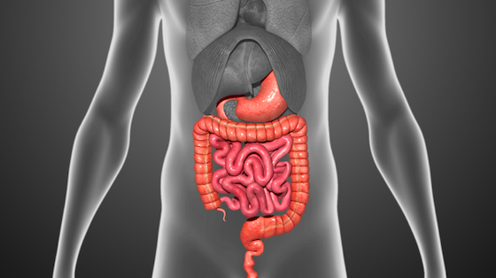 Spanish Study: Switching to Biosimilar Infliximab in IBD Is Safe, Effective at 12 Months