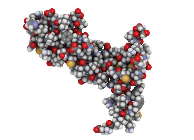 Similar PK, Safety, and Immunogenicity Demonstrated for Proposed Bevacizumab Biosimilar